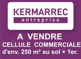 achat Local Commercial 250m² SENE 56