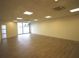 location Local Commercial 110 m² THEIX 56